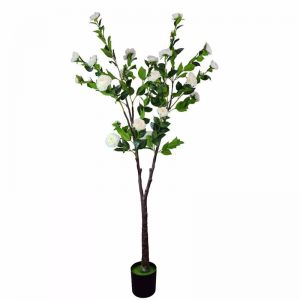 Flowering Natural White Artificial Camellia Tree | 180cm
