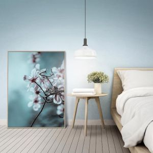 Flowering Plum | Prints and Canvas | Photographers Lane