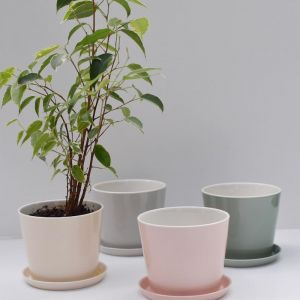 Flowerpot with saucer | Jade Green by Anne Black