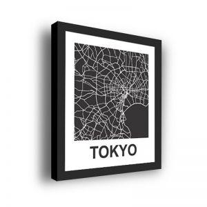 Framed 3D Street Map | Tokyo City Map Print