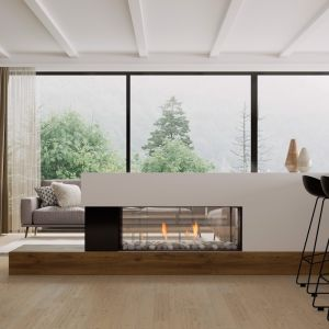 Frameless Gas Fireplaces | DS Series | DS1150 Double Sided