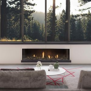 Frameless Gas Fireplaces | DS Series | DS1650 Single Sided