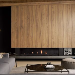Frameless Gas Fireplaces |DS Series | DS1900 Single Sided