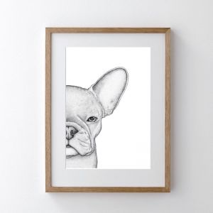 Freddie the Frenchie   Limited Edition Print