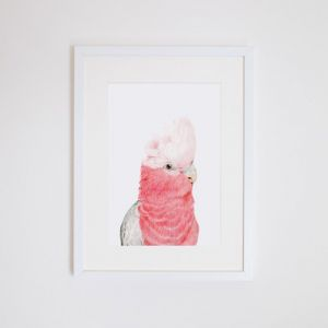 Gary the Galah | Giclee Print | by For Me By Dee