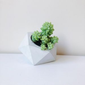 Concrete Planter | Geometric | by Coral and Herb