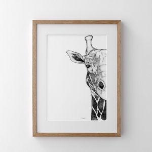 Georgi the Giraffe | Print