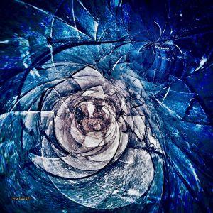 Glacier Rose | Artwork for Lightbox | Various Sizes