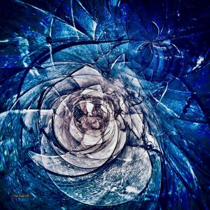 Glacier Rose | Lightbox + Artwork | Various Sizes