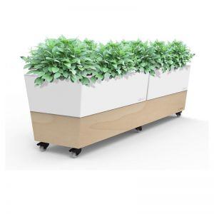 Glowpear Café Planter | Self Watering Mobile Garden