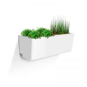 Glowpear Mini Wall   Self Watering Planter