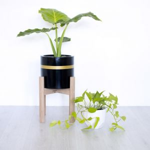 Gold Band | Indoor & Outdoor Planter Pot