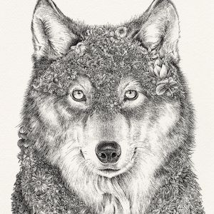 Gray Wolf | Limited Edition Giclée Print