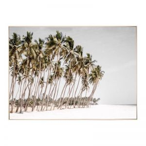 Haiti Beach | Framed Canvas Art