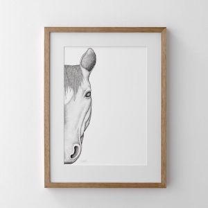Haley the Horse   Print