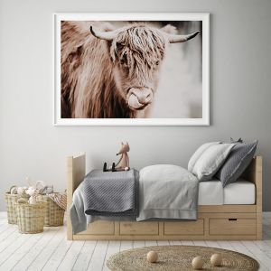 Hamish | Photographic Fine Art Print by Donna Delaney