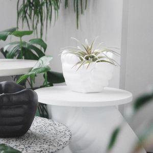 Hand Planter | White