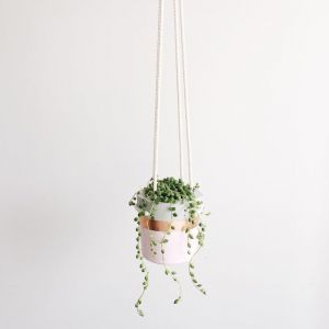 Hanging Planter | Pastel Pink + Rose Gold | by Coral and Herb