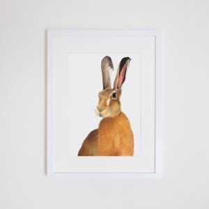 Harry the Hare Giclee Print | by For Me By Dee