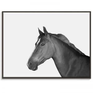 Horse | Canvas or Print by Artist Lane