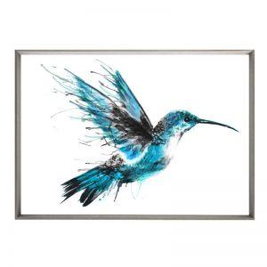 Hummingbird Flourish | Framed Print