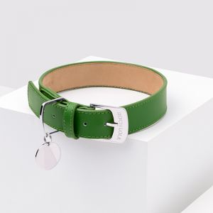 Hunter Leather Dog Collar