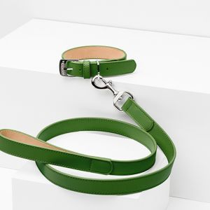 Hunter Leather Dog Lead