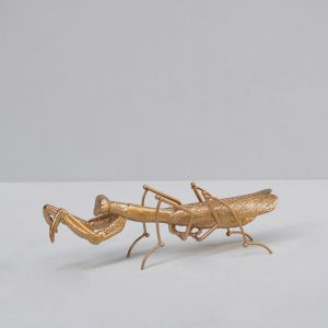 Insect | Praying Mantis | Gold | White Moose