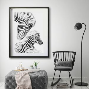"""""""Irreplaceable """" Zebra 