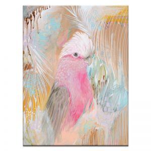 Isla The Galah | Amanda Skye-Mulder | Canvas or Print by Artist Lane