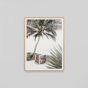 Island Gate | Framed Photographic Print