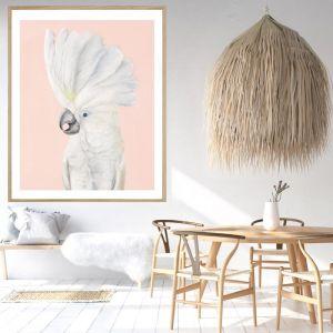James The Cockatoo / Framed Print / P5017 / Colour Clash Studio