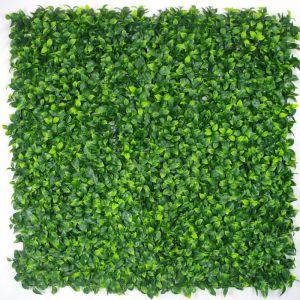 Jasmine Hedge Screen | Green Wall Panel UV Resistant | 100cm x 100cm