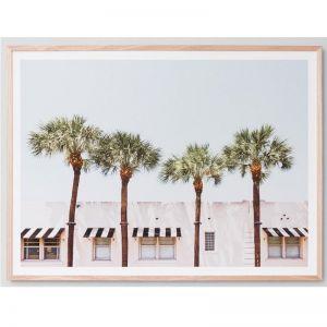 Joshua Tree California | Framed Photograph