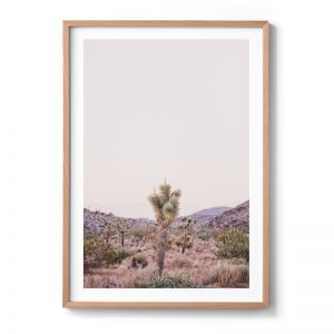 Joshua Tree | Limited Edition | Michelle Schofield Photography