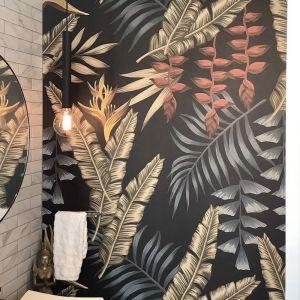 Jungle Nights   Wallpaper