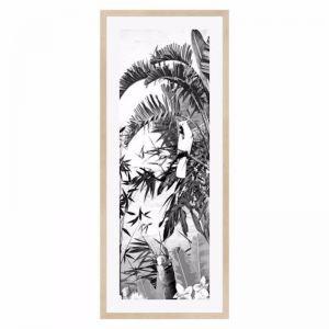 Jungle Noir Cockatoo Framed Print | freedom