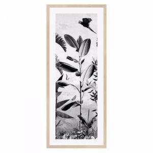 Jungle Noir Parrot Framed Print | freedom