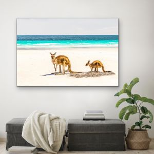 Kangaroo Beach | Photographic Beach Coastal Canvas & Art Print