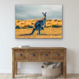 Kangaroo Paddock | Wall Art or Canvas Print