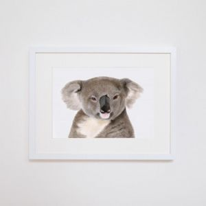 Kev the Koala Giclee Print | by For Me By Dee