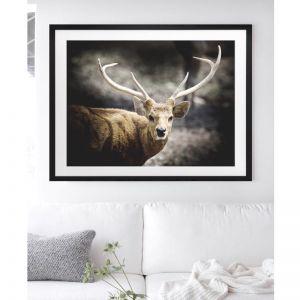 King Deer   Framed Art