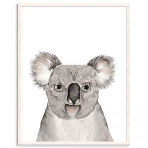 Koala | Bec Kilpatrick | Canvas or Prints by Artist Lane