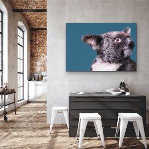 Koala On Blue Linen | Australian Wildlife Canvas / Art Print