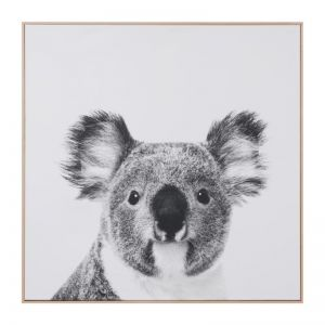 Koala Print On Canvas | Framed