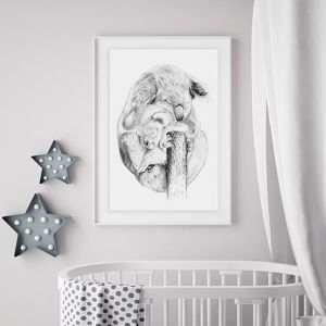 "Koala ""Snuggle"" 