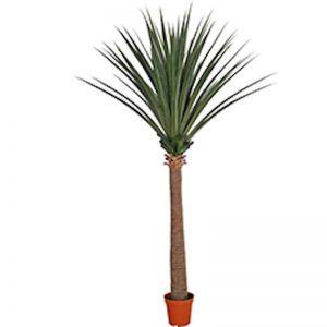 Large Artificial Dracaena | Yucca | 260cm