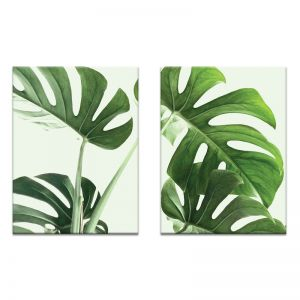 Large Leaves | Canvas or Print by Photographers Lane
