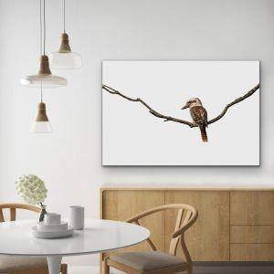 Laugh Kookaburra Laugh | Australian Native Bird Canvas or Art Print