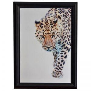 Leopard | Framed Print | by Dasch Design